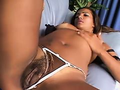 Ebony Porn Tubes